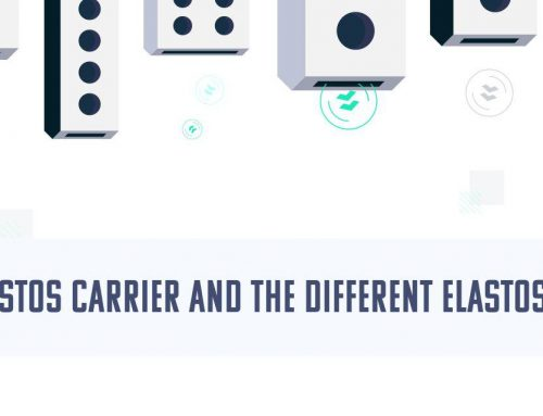 The Elastos Carrier and the Different Elastos Nodes